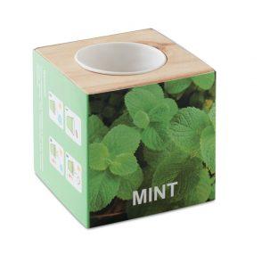Pot en bois avec graines de menthe